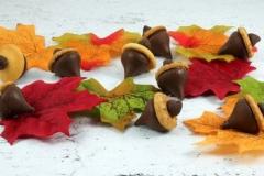 acorn-candy