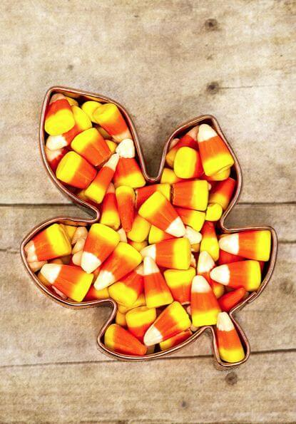 Candy Corn in Leaf mold